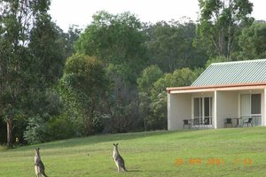 Rothbury Escape accommodation hunter valley