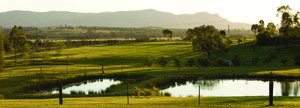 Hunter Valley Landscape